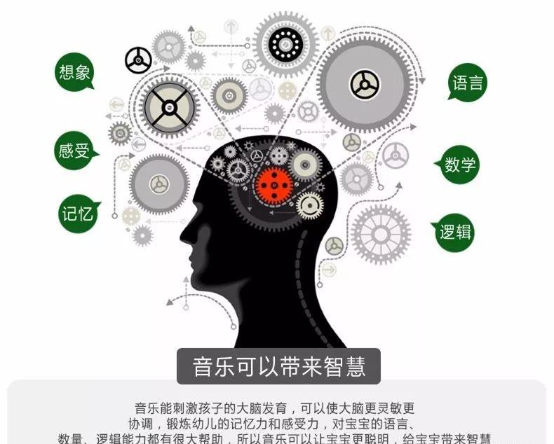 儿童大脑发育