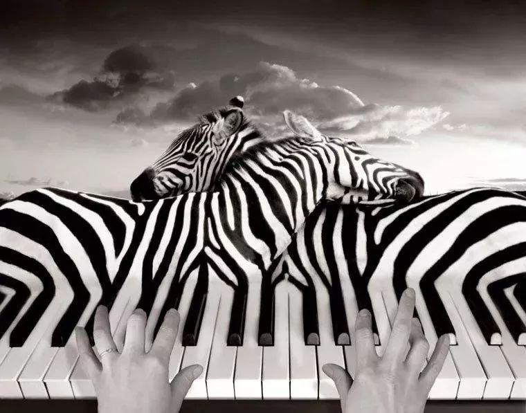 演奏乐器者,大脑更聪明,这些音乐才能你拥有哪些?